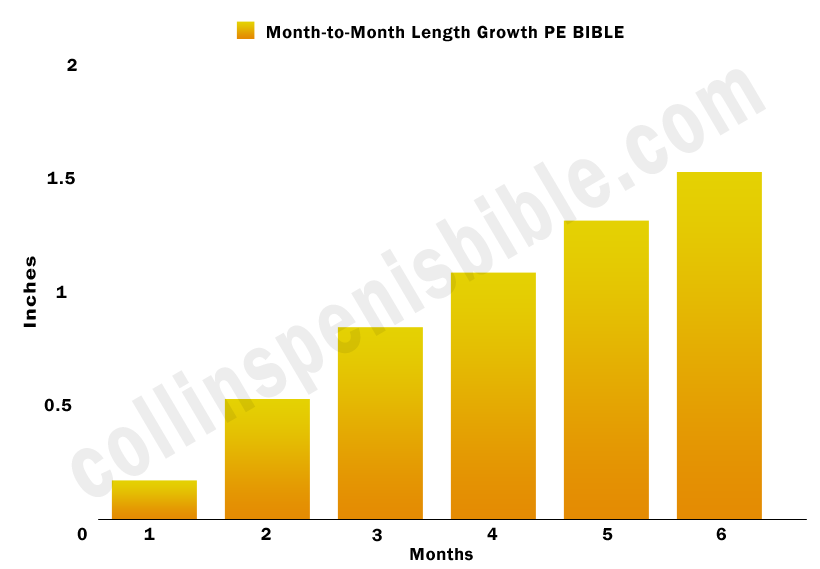 PE Bible length growth graph